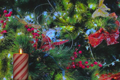 Holiday candy cane candle with red berries and decorations Stock Footage