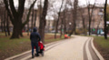 A woman with a baby carriage in the autumn park. Blurred Footage