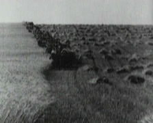 1916 - 1925 - Russia - Farmers 01 Stock Footage
