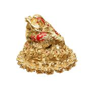 Golden frog from china Stock Photos