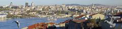 panoramic view of golden horn - stock photo