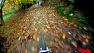 Stock Video Footage of mountain bike video: a single track in the forest - stock video
