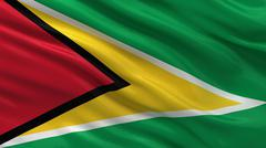 Flag of Guyana Stock Illustration