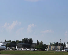 Countryside airport, Airbus A318-112 CJ Elite, cow on field, click for HD Stock Footage