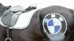 Horse with saddle and BMW logo, click for HD Stock Footage