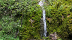 Beautiful waterfall in green spring forest Stock Footage