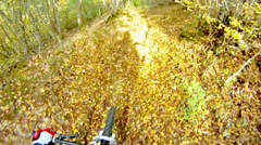 Hd: mountainbiking in autumn leafs forest - stock video Stock Footage