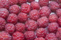 Berry  red  raspberry  fruit Stock Photos