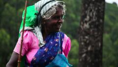 Portret of indian woman Stock Footage