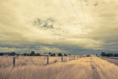 Outback landscape with dramatic sky and  yellow dry grass Stock Photos