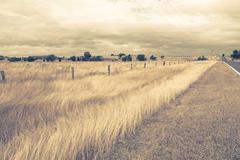 outback landscape - stock photo