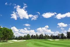 Sunny golf green Stock Photos