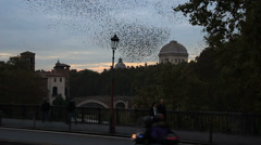 Thousands of starlings over Rome 119 Stock Footage