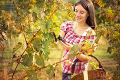 Stock Photo of smiling young woman in vineyard
