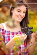 woman observing grapes - stock photo