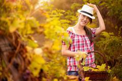 cute girl in vineyard - stock photo