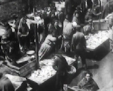 1903 - New York Ghetto - Fish Market - 023 Stock Footage