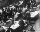 Stock Video Footage of 1903 - New York Ghetto - Fish Market - 023