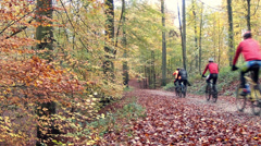 Group of cyclists in the autumn forest. Stock Footage