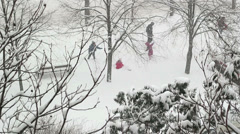 Children Enjoying the Snow Stock Footage