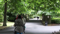 Dublin's St Stephen's Green Stock Footage