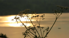 River_1 Stock Footage