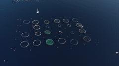 Aerial corsica ajaccio aquaculture Stock Footage
