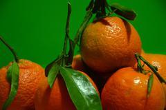 Mandarins - stock photo