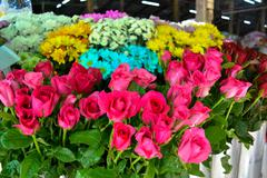 Flowers for sale at market - stock photo