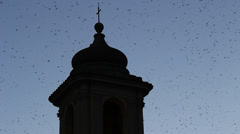 Thousands of starlings over Rome 134 Stock Footage