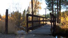 Woman and dog walk across bridge in fall Stock Footage