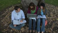 College students studying under a tree - stock footage