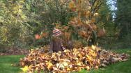 Stock Video Footage of Children playing in a pile of leaves
