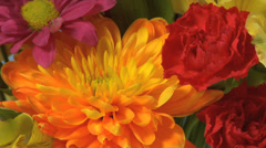 Colorful flowers Stock Footage