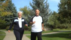 Senior couple walking at park Stock Footage