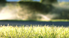 Focus pull from grass to water sprinklers Stock Footage