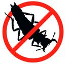 Stock Illustration of Stop pests