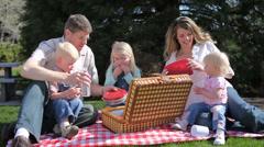 Family having picnic at park Stock Footage
