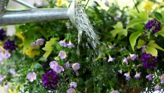 Closeup of watering can Stock Footage