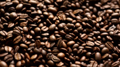 Coffee bean texture - stock footage