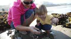 Mother and daughter looking in tidepool Stock Footage