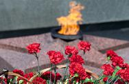 Stock Photo of red carnations against a background of the eternal flame