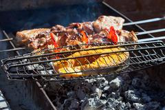 Juicy slices of meat and fish with sauce prepare on fire. Stock Photos
