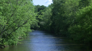 Stock Video Footage of Beautiful river running through the greenery (3 of 7)