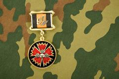 russian medal on a camouflaged background - stock photo