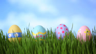 Stock Video Footage of Easter eggs in grass, time lapse