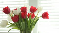 Vase of tulips - stock footage