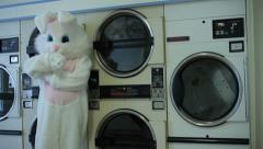 Easter bunny waiting for laundry Stock Footage