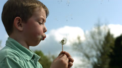 Boy blowing dandelion, slow motion - stock footage