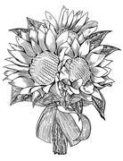 Sunflower wedding bouquet - stock illustration